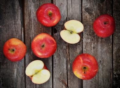 lafille-des-champs-cueillette-pommes1